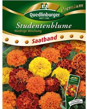 Quedlinburger Saatgut Studentenblume niedrige Mischung