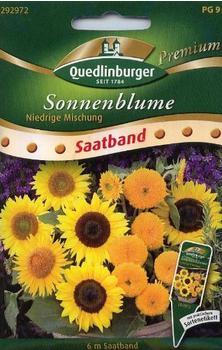 Quedlinburger Saatgut Sonnenblume 'niedrige Mischung'
