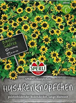 Sperli Husarenknopf 'Sperli's Knöpfchen'