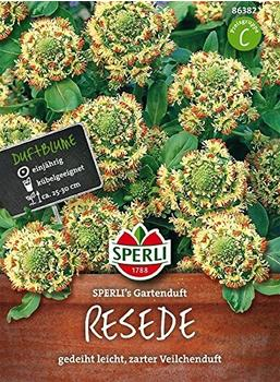 Sperli Resede 'Sperli's Gartenduft'