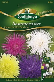quedlinburger-saatgut-riesen-strahlen-mischung