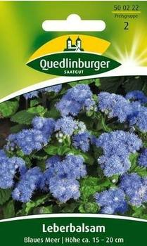 Quedlinburger Saatgut Leberbalsam Blaues Meer