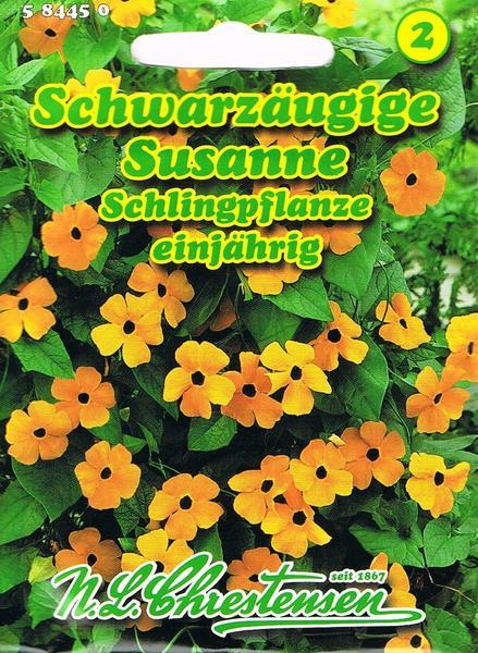 Chrestensen Schwarzäugige Susanne