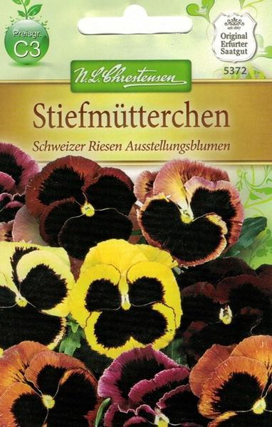 Chrestensen Stiefmütterchen Schweizer Riesen Ausstellungsblumen