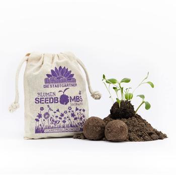 Die Stadtgärtner Seedbombs Schmetterlingswiese (012-004)