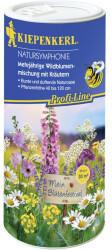 Kiepenkerl Blumenmischung Dose Natursymphonie 30g