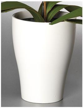 Scheurich Orchideentopf Ø13cm Panna