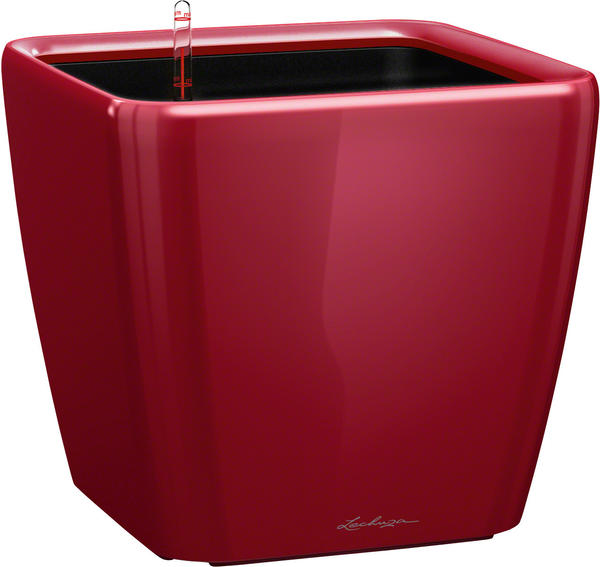 Lechuza Quadro LS 43 scarlet rot