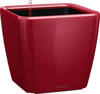 Lechuza Quadro LS 35 All-in-One Set scarlet rot hochglanz