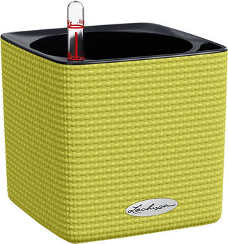 Lechuza Cube Color 14 All-in-One Set limettengrün