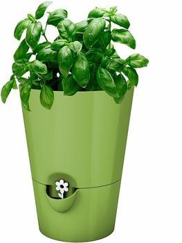Emsa Fresh Herbs Kräutertopf 13x17cm grün (517531)