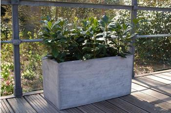 vivanno-maxi-100x45x45-cm-beton-design-grau-211121100