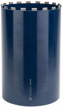 Bosch Best for Concrete 300 mm 2608601383
