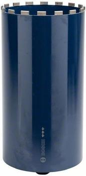 Bosch 250 mm 2608601381