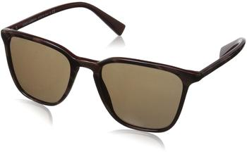 Dolce & Gabbana DG4301 309313 (striped red on bordeaux/brown)