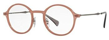 Ray-Ban Light Ray RX7087 5637 (brown/silver)
