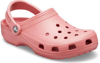 Crocs Classic blossom