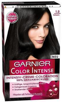Garnier Color Intense 1.0 Schwarz