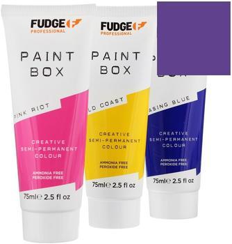 fudge-paint-box-purple-people-haartoenung-75-ml