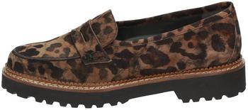 Sioux Vesilca-716 brown leo