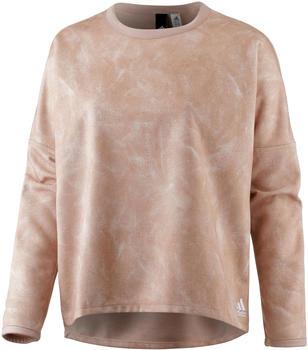Adidas Id Reversible Sweatshirt (CF0329)