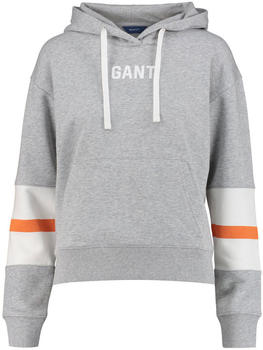 GANT Graphic Block Stripe Hoodie light grey (4203624-94)