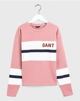 GANT Graphic Block Stripe Sweatshirt ash reose (4203623-606)