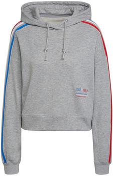 Adidas Originals Adicolor Tricolor Trefoil Crop Hoodie medium grey heather (GN2855)
