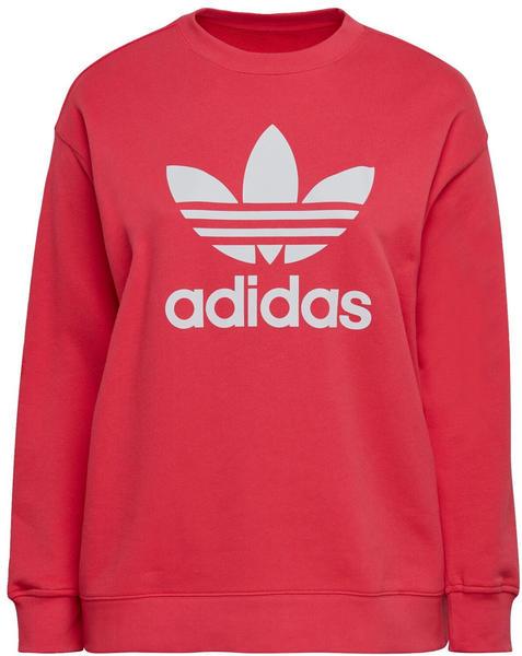 Adidas Trefoil Sweatshirt Big Sizes power pink/white (GD2380)