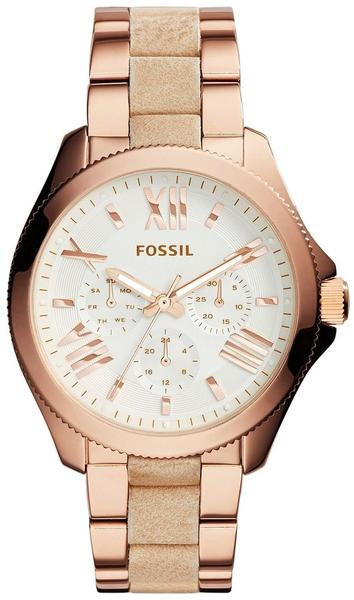 Fossil Cecile (AM4622)