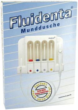 Fluidenta Mundduschenset