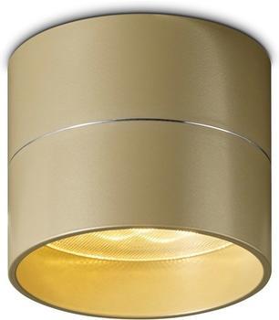 OLIGO Tudor S champagner