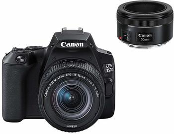 Canon EOS 250D + EF-S 18-55 IS STM Kit