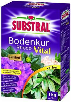 Substral Bodenkur Rhodo-Vital 1 kg