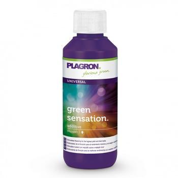 Plagron Green Sensation Blütenaktivator (100 ml)
