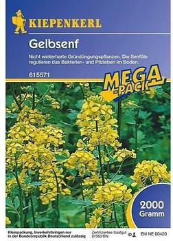 kiepenkerl-gelbsenf-2-kg