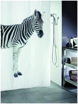 Spirella Duschvorhang Zebra black