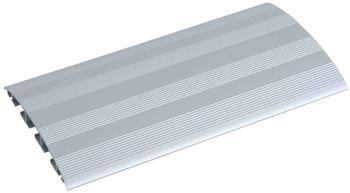 Bachmann Aluminium geriffelt 2m (930.061)