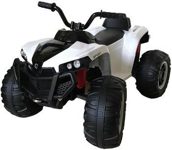 es-toys-s888-2x-25w-12v7ah