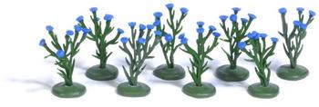 busch-8-kornblumenpflanzen-h0