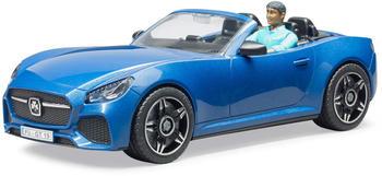 bruder-roadster-mit-fahrer