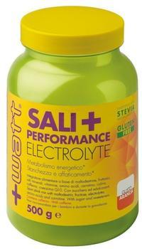 +Watt Sali+ Performance Electrolyte 500 g