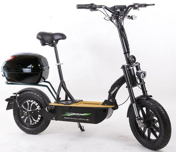 Didi Thurau Edition Eco-Tourer 600W