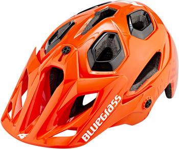 bluegrass-golden-eyes-m-orange-56-59-cm