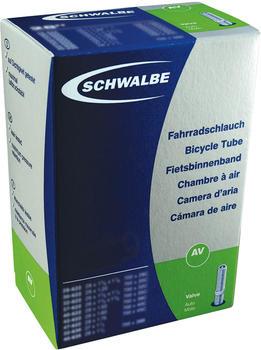 Schwalbe SV 21 A