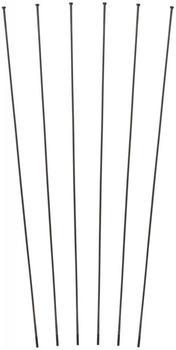 DT Swiss Speichenkit für RR 21 DICUT® / PR 1600 DICUT® schwarz universal
