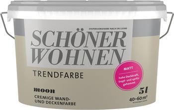 schoener-wohnen-trendfarbe-matt-5l-moon