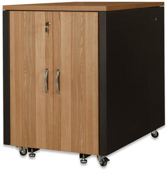 Digitus SOUNDproof Schrank DN-19 17U-SO-T