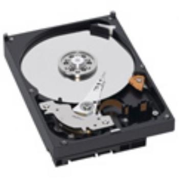 Western Digital AV 320GB (WD3200AVJS)