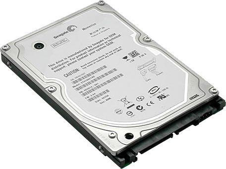 Seagate ST9500325AS Momentus 5400.6 500 GB